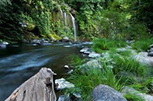 Обои США Водопады Реки Калифорния Mossbrae falls Природа фото