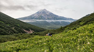Фотография Россия Пейзаж Горы Камчатка Трава Природа