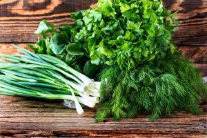 Фотографии Овощи Лук репчатый Укроп Зелёный лук Еда