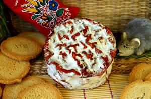 Фото Выпечка Пирог Печенье Мыши Еда