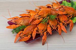 Обои Морепродукты Раки Еда