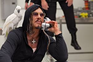 Фотография Микки Рурк Попугаи Мужчины Железный человек Телефон Крест Очки Знаменитости
