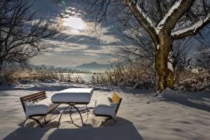 Фотография Сезон года Зима Столы Скамья Снег Деревья Природа