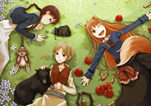 Обои Spice and Wolf Аниме