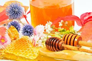 Картинки Мед Сладости Пчелиные соты Еда Цветы