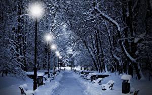 Фото Зимние Парки Ночные Уличные фонари Аллеи Снеге Скамья Природа Города