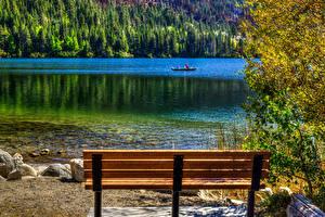 Обои США Озеро Калифорнии Скамейка June Lake Природа