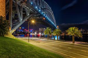 Фотографии Австралия Мосты Дороги Сидней Ночные Уличные фонари Пальмы Трава Города