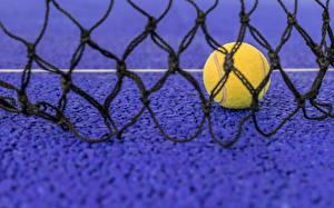 Обои Теннис Вблизи Мяч Сетка спортивные
