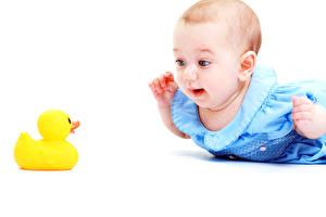 Картинка Игрушки Утки Грудной ребёнок ребёнок
