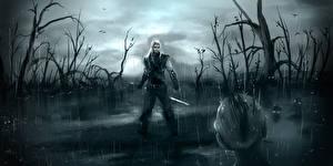 Фотографии The Witcher Мужчины Воители Дождь Болото Фэнтези