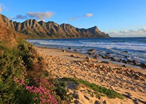 Фотография Море Берег Пейзаж Африка Южно-Африканская Республика Песок Overberg