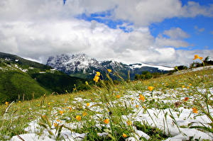 Фотография Небо Луга Гора Весна Снега Облака Природа