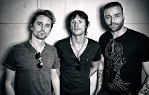 Фотографии Мужчины Muse Трое 3 Очки Matthew Bellamy, Christopher Wolstenholme, Dominic Howard Знаменитости