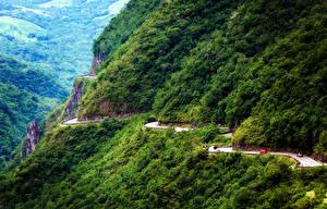 Фотографии Бразилия Горы Дороги Лес Serra do Rio do Rastro Природа