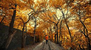 Обои Осенние Железные дороги Деревья Природа Девушки