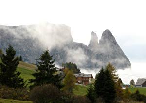 Фотография Пейзаж Италия Гора Дома Тумана Ели Bellavista Природа