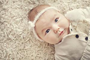 Фотография Грудной ребёнок Взгляд Лица Милые ребёнок