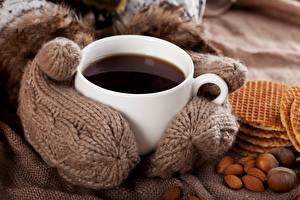 Обои Кофе Крупным планом Печенье Чашка Еда