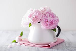Картинки Розы Вблизи Розовый Ваза Лепестки Цветы