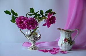 Фотографии Натюрморт Роза Вазы Кувшин Лепестки Цветы