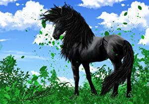 Фото Лошади Небо Векторная графика Рисованные Облака Трава Листва Черный Животные