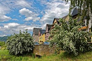 Фотография Германия Здания Весенние Цветущие деревья Эдигер-Эллер Облака Города