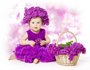 Фото Сирень Девочки Платье Корзины Фиолетовая ребёнок Цветы