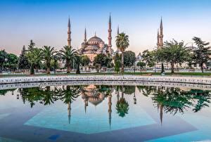 Картинка Турция Храмы Стамбул Голубая мечеть Бассейны Пальмы Blue Mosque