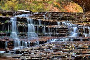 Фотографии Парки Водопады Штаты Зайон национальнай парк Скала
