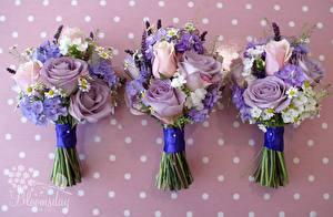 Фотография Роза Ромашки Флоксы Букет Крупным планом Праздники Втроем Цветы