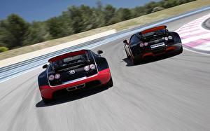 Фотография BUGATTI Двое Сзади Дорогие Родстер Veyron Grand Sport Roadster Vitesse WRC Авто