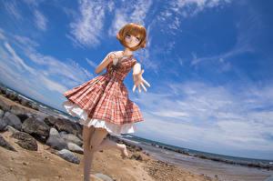 Картинка Море Камни Небо Игрушки Куклы Платье Шатенка Природа Девушки
