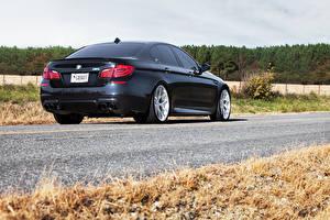 Картинка BMW Вид сзади Черный Асфальт m5 f10 Автомобили