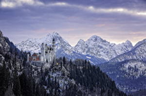 Картинки Германия Замки Зимние Гора Леса Пейзаж Нойшванштайн Бавария Города