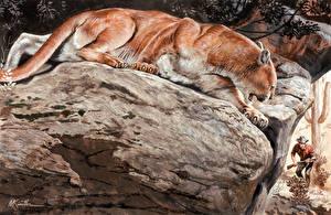 Обои Пумы Картина Большие кошки Рисованные Камень