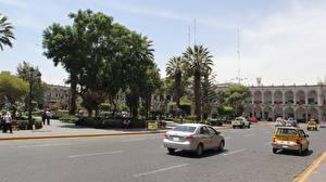 Фото Чили Дороги Улица Пальмы Santiago город