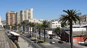 Фотографии Дома Чили Дороги Вальпараисо Улице Пальмы Города