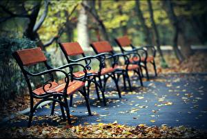 Фото Осень Парки Скамейка Природа