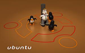 Обои для рабочего стола Ubuntu Linux Best Компьютеры Юмор 3D_Графика