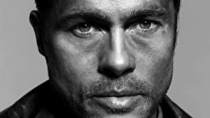 Картинка Brad Pitt Мужчина Взгляд Лицо Знаменитости