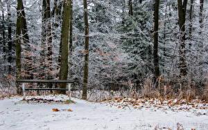 Фотография Канада Парки Зима Скамейка Ontario Homer Watson Park Lookout Природа