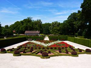 Фотографии Бельгия Сады Кусты Газоне Roseraie Coloma Природа