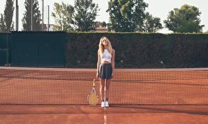 Обои Теннис Спортивная сетка Девушки