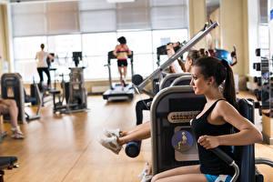 Фото Фитнес Спортивный зал Тренировка gym training people doing exercises Девушки