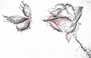Фото Роза Бабочки Рисованные Цветы Животные