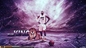 Фотографии Баскетбол Львы Мужчины Большие кошки Мяч Негр Lebron James nba Спорт Знаменитости Животные