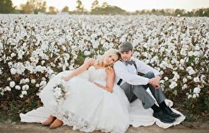 Фотография Мужчины Любовники Невесты Вдвоем Сидящие Платье Блондинка Жених молодая женщина