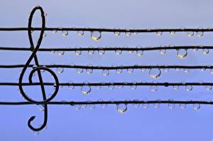 Картинка Крупным планом Ноты Капли nota treble clef