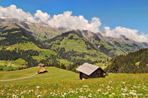 Картинки Швейцария Гора Дома Луга Пейзаж Берн Трава Облачно Berner Oberland Природа